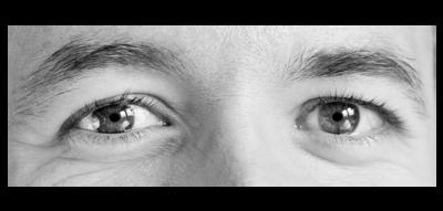 Exemple de test de Reading the Mind in the Eyes (RME).